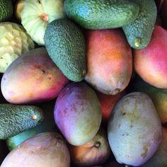 Surtido de colores, olores y sabores tropicales   Ya puedes combinar en una caja las distintas joyas  exóticas que guarda la ☀️ Costa Tropical      http://www.huertatropical.com/tienda-comprar-fruta-tropical-de-temporada/comprar-aguacate-costa-tropical-granada/comprar-surtido-de-aguacate-hass-y-chirimoya/    #aguacate #chirimoya #mangos #CostaTropical