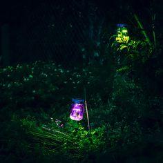 Unos tarros luminosos mágicos