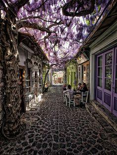 Molyvos, Lesvos, Grèce