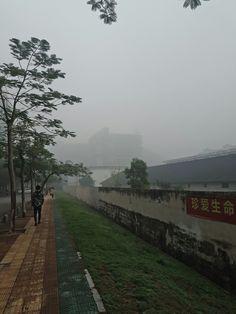Foggy day in Xiamen
