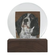 Personalized Pet Photo Snow Globe - photography gifts diy custom unique special