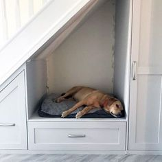 Top 70 Best Under Stairs Ideas - Storage Designs Designs For Under Stairs Dog Bed With Cabinets Under Stairs Dog House, Under Stairs Nook, Under Stairs Cupboard, House Stairs, Dog Bed Stairs, Under Stairs Pantry Ideas, Toilet Under Stairs, Living Room Under Stairs, Under Staircase Ideas