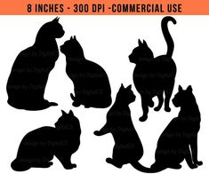 Items similar to Cat clipart Black cat clip art Halloween clipart Halloween cat Catlover Cat lover vdigital PNG commercial use clipart on Etsy Cat Clipart, Cat Vector, Halloween Clipart, Halloween Cat, Cat Template, Templates, Clip Art, Cat Quilt, Cat Silhouette