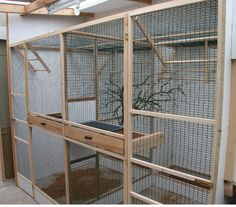 indoor bird aviary designs #howtobuildanaviary #aviariesdiy