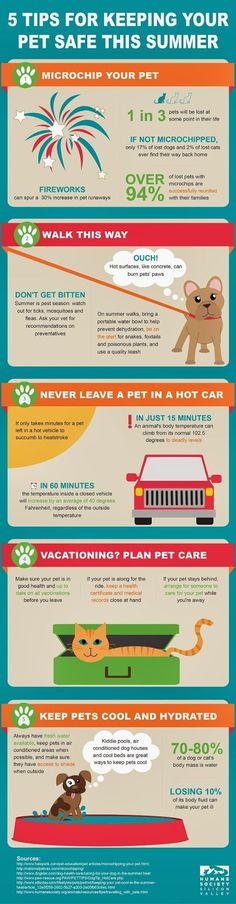 5 Tips for Keeping Your #Pet Safe This Summer #Infographic