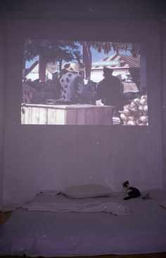 Projector in blank wall playing old horror films or vintage halloween clips during party
