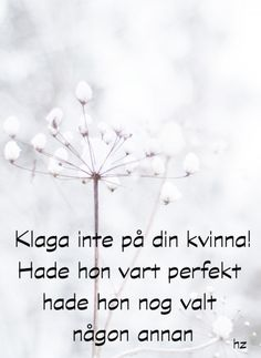 Lisbet Olofsson, the one and only Viria, Great Quotes, Funny Quotes, Sarcastic Words, Words Quotes, Sayings, Wise People, Proverbs Quotes, The Ugly Truth