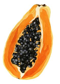 We love using papaya in products such as Facial Glow and our Mac & Pap Body Scrub, as it contains naturally occurring AHAs which work to naturally remove dead skin cells and exfoliate your skin. Watercolor Fruit, Fruit Painting, Watercolor Paintings, Acrylic Paintings, Watercolours, Painting Flowers, Colorful Paintings, Gouache Painting, Diy Painting