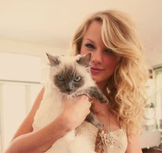 Taylor Swift media gallery on Coolspotters. See photos, videos, and links of Taylor Swift. Taylor Swift Fotos, Taylor Swift Cat, Taylor Swift Pictures, Taylor Alison Swift, Swift 3, Meredith Swift, Michelle Phillips, Christina Ricci, Celebrities With Cats
