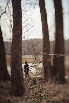Boyhood, Everyday DocumentaryMarch 27, 2016 Amongst the Trees By Angee Manns
