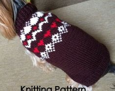 Stranded Dog Sweater-PDF Pattern by DottyPatterns on Etsy Dog Sweater Pattern, Sweater Knitting Patterns, Hand Knitting, Crochet Patterns, Dog Jumpers, Yarn Sizes, Dog Sweaters, Dog Dresses, Knit Crochet