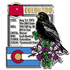 Colorado State Informational Magnet For $1.79