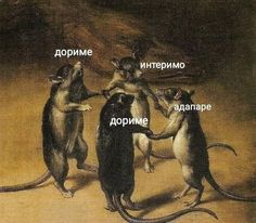 Mindless Self Indulgence - Pay For It Memes Humor, Cat Memes, Jokes, Reaction Pictures, Funny Pictures, Cool Pictures, Hello Memes, Russian Memes, Susanoo
