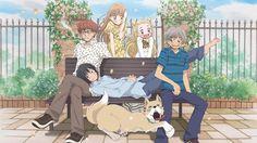 Top 10 romance anime by Anime Decoy. Animes To Watch, Anime Watch, Top 10 Romance Anime, Valentines, Guys, Chilling, Selena Gomez, Netflix, Blog