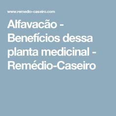 Alfavacão - Benefícios dessa planta medicinal - Remédio-Caseiro Medicinal Herbs, Medicinal Plants, Body Care, Health And Wellness, Home Remedies, Herbs, Recipes, Per Diem