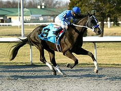 BLACK ONYX March 2013 Spiral Stakes G3 1-1/8 miles synth