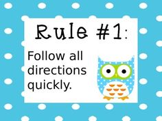Free Owl Whole Brain Teaching Rules - Editable