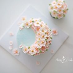 flowercake #flower #cake #dessert #buttercreamcake #buttercream #class #koreanflowercake