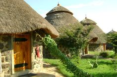 Visit Ethiopia and enjoy the luxury accommodation at the Paradise Lodge with Cox & Kings Travel. Tiny House Loft, My House, Resorts, King Travel, Reptile House, Vernacular Architecture, Construction, Natural Building, Round House