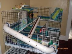 This was hubby's vision, and I think he did a wonderful job, they love the tunnels!!  Side view..