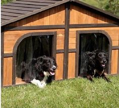 Double Dog House For Outside Extra Large Dogs Wood Pet Shelter Cage Yard Kennel