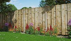 Hydrangea Seeds, Hydrangea Care, Feeling Pictures, Home Pictures, Landscaping Tools, Landscaping Company, Garden Fencing, Garden Tools, Back Gardens