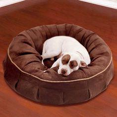 Animals Matter Royal Pet Bed - Red, Medium - Frontgate Dog Bed Frontgate http://www.amazon.com/dp/B006K2PS3G/ref=cm_sw_r_pi_dp_P8iVub0G8MFRJ
