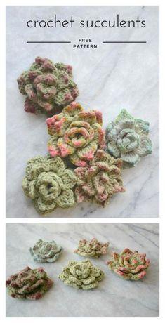 Succulents Free Crochet Pattern ##freecrochetpatterns