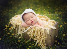 Inspiration For New Born Baby Photography : outdoor newborn photos