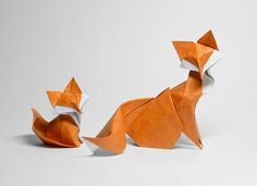 Curved Origami With Wet Paper Will Blow Your Mind! :http://designbump.com/vietnamese-artist-to-create-curved-origami-with-wet-paper/