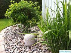 hängkaragan,stenanläggning,prydnadsgräs,stenlykta. Mycket sten istället för mycket plantor.