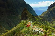 La Masca walk in Tenerife.. Looks absolutely stunning! definitely on my to do list