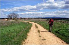 Still walking to Camino de Santiago