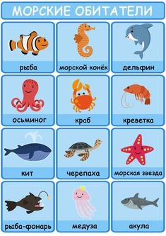 Learning Languages Tips, Playing Cards, Album, Playing Card Games, Game Cards, Playing Card, Card Book