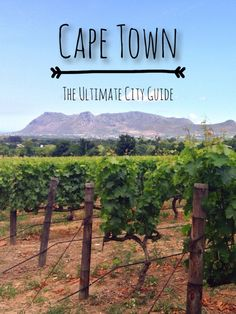 Cape Town: The Ultimate City Guide