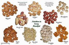 Fanatic Cook: What Is A Serving Of Nuts?