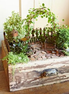 Making fairy gardens from drawers or old pots is eco-friendly, as you are giving old materials a new life. Look at how beautiful this old, worn drawer now is with its fresh purpose!