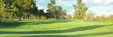 Come play golf at Haggin Oaks in Sacramento, CA - Where I really learned how to play golf!