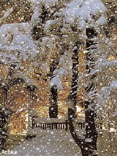 Flower Love — Had to share this Merry Christmas Gif, Christmas Scenery, Winter Scenery, Christmas Mood, Vintage Christmas Cards, Christmas Pictures, Christmas Background, Winter Images, Winter Pictures