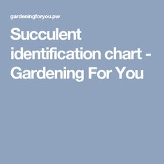 Succulent identification chart - Gardening For You