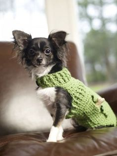 Crocheted Doggie Sweater Pattern