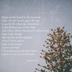 Hope 🌸🌷🌺🌼🌻 . . . . . . . . . . #text #textposts #poem #words#textgram #saying #thoughts #quotes #originalquote #written #philosophy… Original Quotes, Opening Day, Text Posts, Troy, Philosophy, The Darkest, Poems, Wisdom, In This Moment