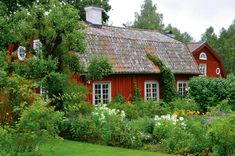 1800th century house with traditional garden