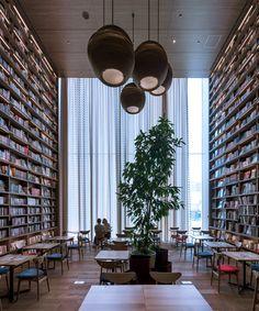 akane moriyama's towering translucent curtains for hirakata T-SITE bookstore