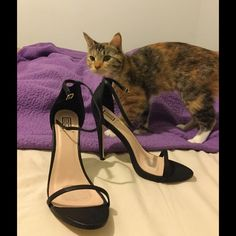 Black snakeskin printed strappy sandals Kitty not included. Black, faux snakeskin print sandals.  Ankle strap and a strap across the toes.  5 inch heel. Super cute, but too high for my aging feet lol. Shoe Dazzle Shoes Heels