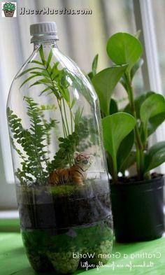 Macetas con Botellas de Plástico. | ♻Hacer Macetas Recicladas ♻ - Y Decoradas para Tu Jardín E Interiores, tecnicas de Jardineria y huerta urbana. Aprende a para que sirven y cómo usar las Plantas Medicinales , todo esto y mucho mas en HacerMacetas.com Plastic Bottles, Terrarium, Things To Do, Glass Vase, Crafts For Kids, Recycling, Projects To Try, Plants, Cool Stuff