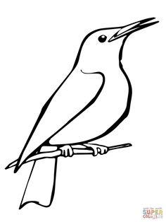 Znalezione obrazy dla zapytania szpak ptak kolorowanka