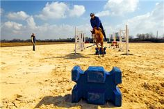 Perfect Jumping Position: Exercise 4 - Riding a grid | Your Horse | Videos & Advice | Riding Advice | Show Jumping