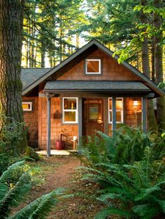 Lights shining from a shingled cabin--what could be more inviting? 360 sqft guest cabin at WildSpring resort, near Port Orford, Oregon Little Cabin, Little Houses, Small Houses, Cabana, Ideas De Cabina, Guest Cabin, Luxury Cabin, Cabins And Cottages, Tiny Cabins