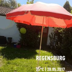 Wetter genießen #Regensburg #Germany #outdoors #grass #rain #umbrella #nature #summer #tent #weather #leisure #downpour #wood #travel #traveling #visiting #instatravel #instago #shelter #wet #lawn #protection